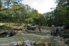 Zoo-Muenster-260909IMG_5907_9795