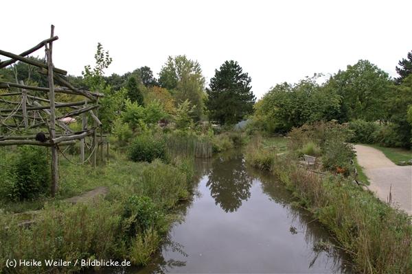 Zoo-Rheine-120909IMG_2287