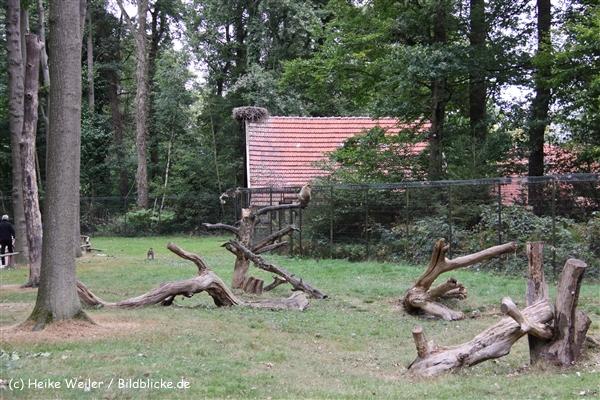 Zoo-Rheine-120909IMG_2520