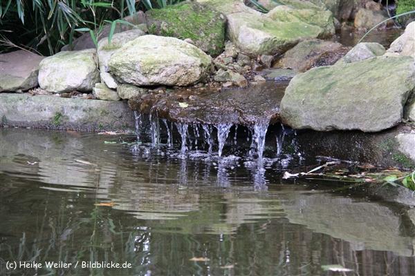 Zoo-Rheine-120909IMG_2784