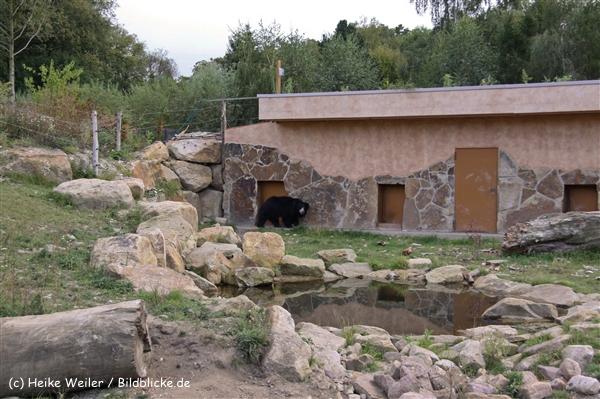 Zoo-Rheine-120909IMG_2916