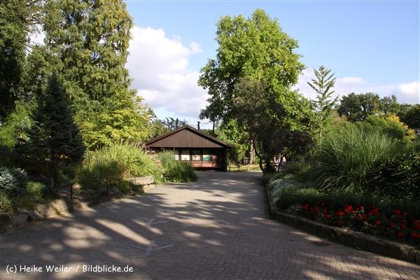Zoo-Rheine-120909IMG_3289