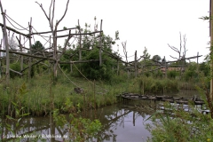 Zoo-Rheine-120909IMG_2270