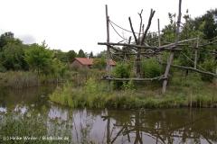 Zoo-Rheine-120909IMG_2271