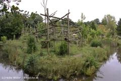 Zoo-Rheine-120909IMG_2286