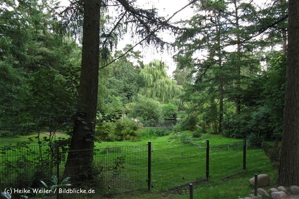 Zoo_Rostock_310712_271_IMG_6250