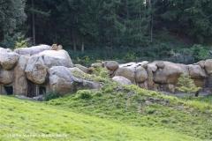 Zoo Wuppertal 040910 - IMG_1775