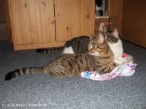 Kisha und Matou 2007 - DSCF1709-1