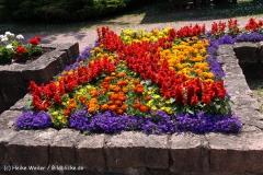 Tiergarten Bernburg 030710-IMG_5656