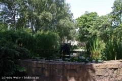 Tiergarten Bernburg 030710-IMG_5690