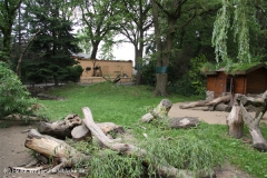 Tierpark Essehof 250610-IMG_4892-2