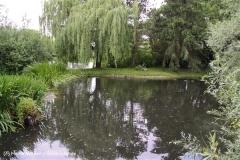 Tierpark Essehof 250610-IMG_4893