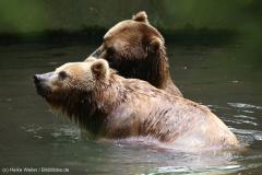 Tierpark_Hagenbeck_180516_IMG_4043