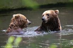Tierpark_Hagenbeck_180516_IMG_4064