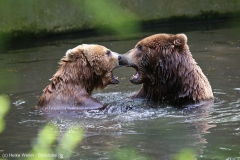 Tierpark_Hagenbeck_180516_IMG_4065