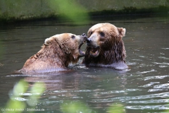 Tierpark_Hagenbeck_180516_IMG_4072
