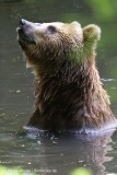 Tierpark_Hagenbeck_180516_IMG_4144