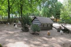Tierpark_Stroehen_220814_copy_Heike_Weiler_IMG_5812_5501