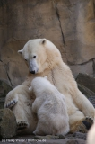Zoo_Bremerhaven_100516_IMG_1782