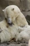 Zoo_Bremerhaven_100516_IMG_1796_1362