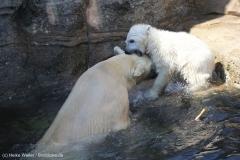 Zoo_Bremerhaven_100516_IMG_1883