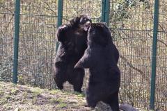 Zoo-Aschersleben-020410IMG_8899