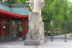 Zoo Berlin270710 - 100IMG_9400_1597
