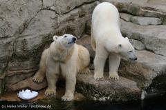 Zoo_Bremerhaven_180515_IMG_4842