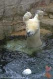 Zoo_Bremerhaven_180515_IMG_4895