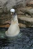 Zoo_Bremerhaven_180515_IMG_4898