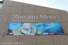 Zoo_am_Meer_Bremerhaven_210714_copy_Heike_Weiler_IMG_2891_5429