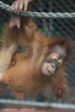 Zoo_Dortmund_100715_IMG_6670