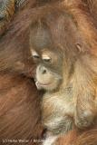 Zoo_Dortmund_190714_copy_Heike_Weiler_IMG_2068