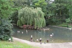 Zoo Dortmund 310711- IMG_3620_0289