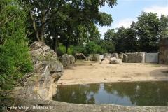 Zoo Duisburg 210810 - IMG_0479_1896
