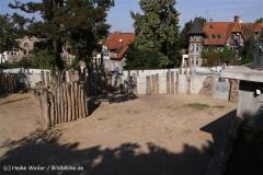 Zoo-Halle-190909-IMG_4706