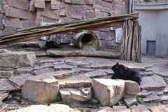 Zoo-Halle-190909-IMG_4712