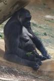 Zoo_Hannover_010416_IMG_0235