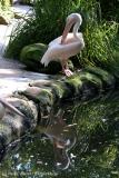 Zoo_Hannover_020916_IMG_6993