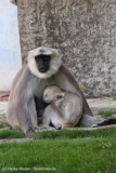 Zoo_Hannover_020916_IMG_7167