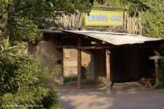 Zoo_Hannover_020916_IMG_7708