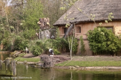 Zoo_Hannover_030416_IMG_0550