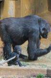 Zoo_Hannover_030416_IMG_8457