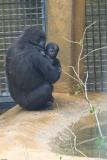 Zoo_Hannover_180915_IMG_8626