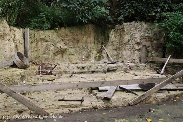 Zoo_Hannover_191012_IMG_0644