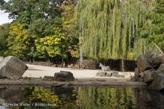 Zoo_Hannover_191012_IMG_0084