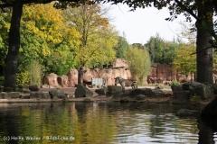 Zoo_Hannover_191012_IMG_0116