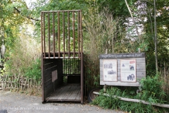 Zoo_Hannover_191012_IMG_0_9965