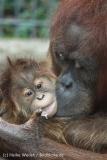 Zoo_Hannover_230813_IMG_4096