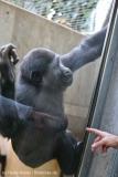 Zoo_Hannover_231215_IMG_2544